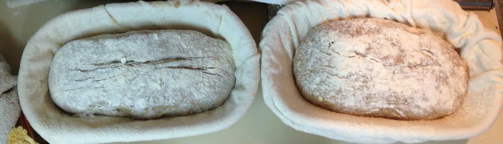 Pão Rústico