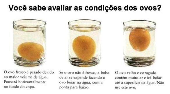 Você sabe avaliar as condições dos ovos?