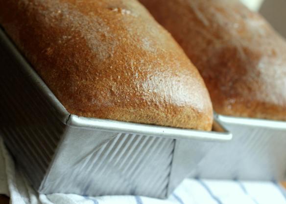 Pão de Forma Integral Com  Mel